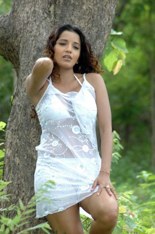 south indian glamour actress monalisa bikini stills 11 Monalisa hot photos