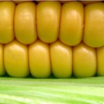 The CORN Health and Nutritional Information