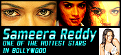 Sameera Reddy Banner 001 Telugu Actress
