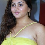 Jaganmohini is a U turn for me - Says Namitha aunty