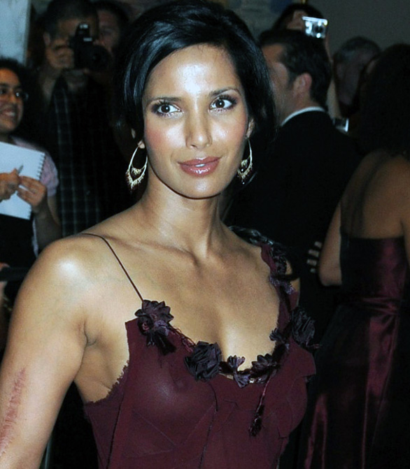 Indian model Padma Lakshmi showed up at the White House Correspondents
