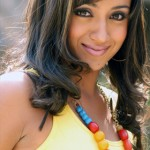 Bollywood films are special - Says Trisha