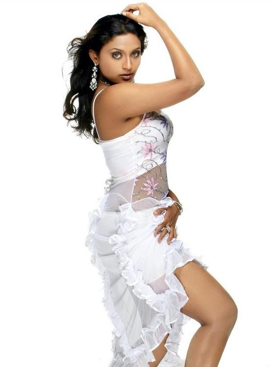 telugu movie actress akshaya hot stills pictures photos 2 Hot South Indian actress akshaya spicy gallery