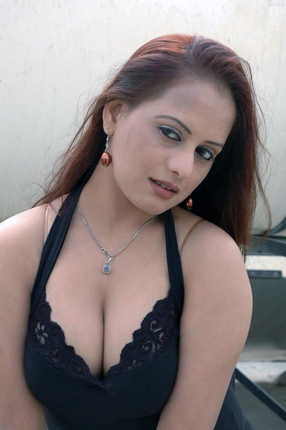 telugu movie actress tanisha hot stills pictures photos 3 South Indian actress tanisha hot hq picture gallery