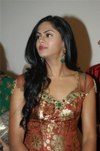 Telugu Josh Audio karthika 199x300 Karthika is a female lead in Simbus KO