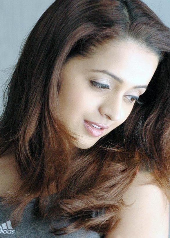tamil telugu malayalam actress bhavana hot spicy stills 12 Actress Bhavana photo gallery