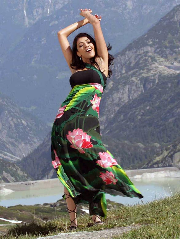 telugu actress kajal agarwal hot stills photo gallery 28 Kajal Agarwal hot photo gallery