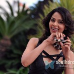 bollywood-actress-mallika-sherawat-stills-10