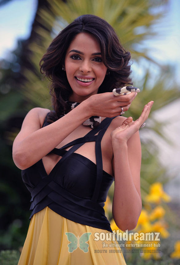 bollywood actress mallika sherawat stills 15 Mallika Sherawat Photo Gallery