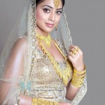 Shriya searching for suitable groom