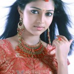 Amala Paul strives to set aside 'Sindhu Samaveli' identity