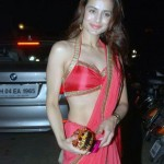 Amisha Patel Hot in Red Saree