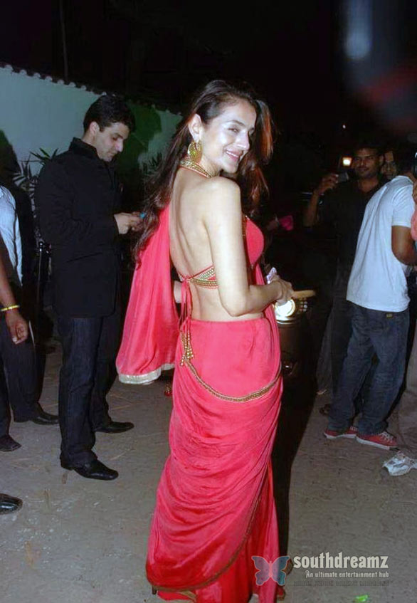 Amisha Patel in Red Saree 11 Amisha Patel Hot in Red Saree