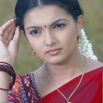 Saranya Mohan picks a new job