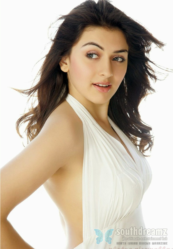 Hansika is the most wanted girl of the tinsel town ~ hotgirls1000