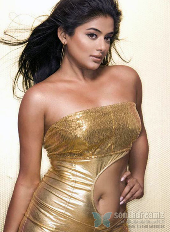 Priyamani Hot Spicy Photo Gallery 6 Priyamani stunning photo shoot