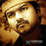 What's the Story of Vijay's Pagalavan?