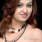 Tamil-masala-Actress-Sona-Heiden-Photos-0040