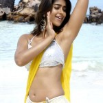 Ileana replaces Shruti Hassan in Gabbar Singh