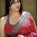 Namitha's next movie