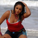 Priyamani joins good books of T-Lovers