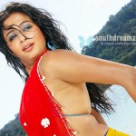 Top heroine say no to Bollywood offer?