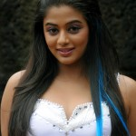 Will Priyamani's desire get Wings??