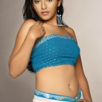 malayalam-glamour-actress-Anjali-sexy-photo
