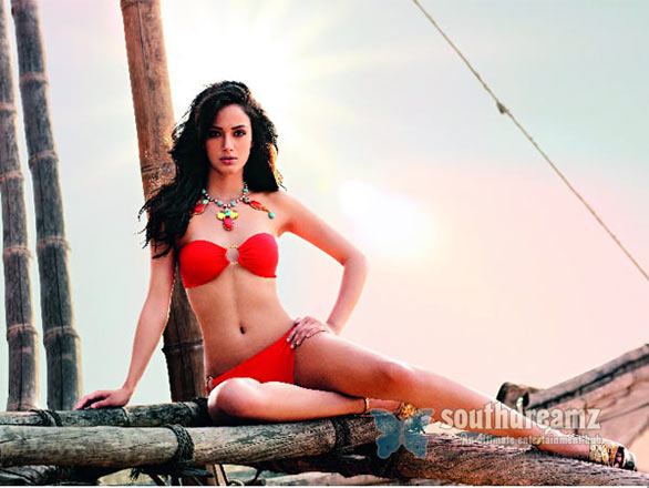 The Hottest Kingfisher calendar girls