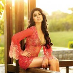 Shriya Saran files complaint against producer