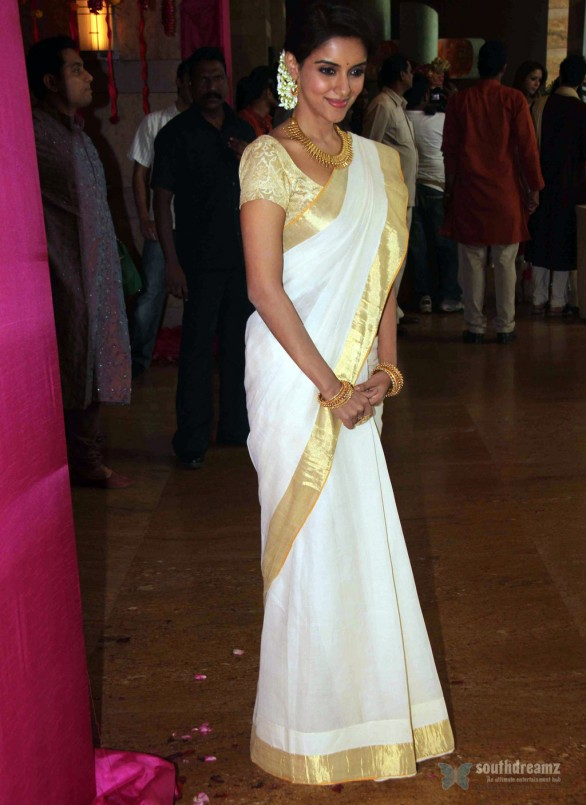 Asin-at-Genelia-Ritesh-Wedding-Ceremony-3