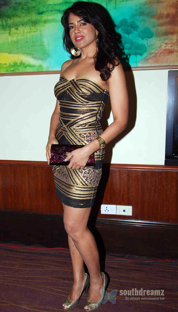 Sameera Reddy at Private Party 1 Sameera Reddy, Rahul Bose in Viswaroopam?