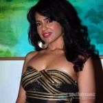 I believe in item numbers – Sameera Reddy