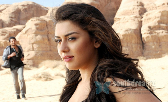 hansika Hansika Motwani   Dream girl of Kollywood