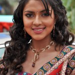 Vishal to romance Amala Paul?