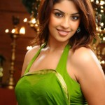 hot-n-spicy-actress-richa-gangopadhyay-stills10