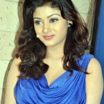 I'm not in love with any industrialist, screams Oviya
