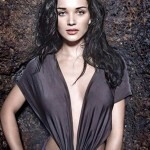 Amy Jackson pips Samantha out of Vikram – Shankar movie?