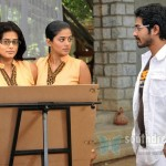 Chaarulatha review