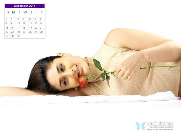 kareena-kapoor-desktop-calendar-december-2013