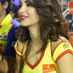 Shruti Hassan says no to Sandalwood's Puneet Rajkumar
