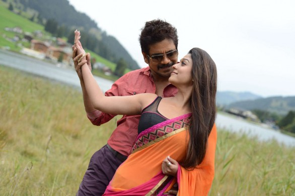 nagarjuna-nayantara-hot-photos-in-greeku-veerudu-1