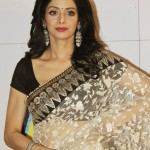 Sridevi-in-saree