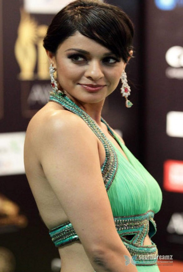 Pooja-Kumar-in-a-backless-gown-Pictures