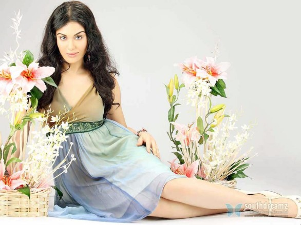 bollywood sexy actress adah sharma hot photo shoot 11 586x439 Puri Jagannath to intrduce 1920 movie heroine Adah Sharma