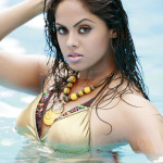 Actress-Karthika-Unseen-Photos-1