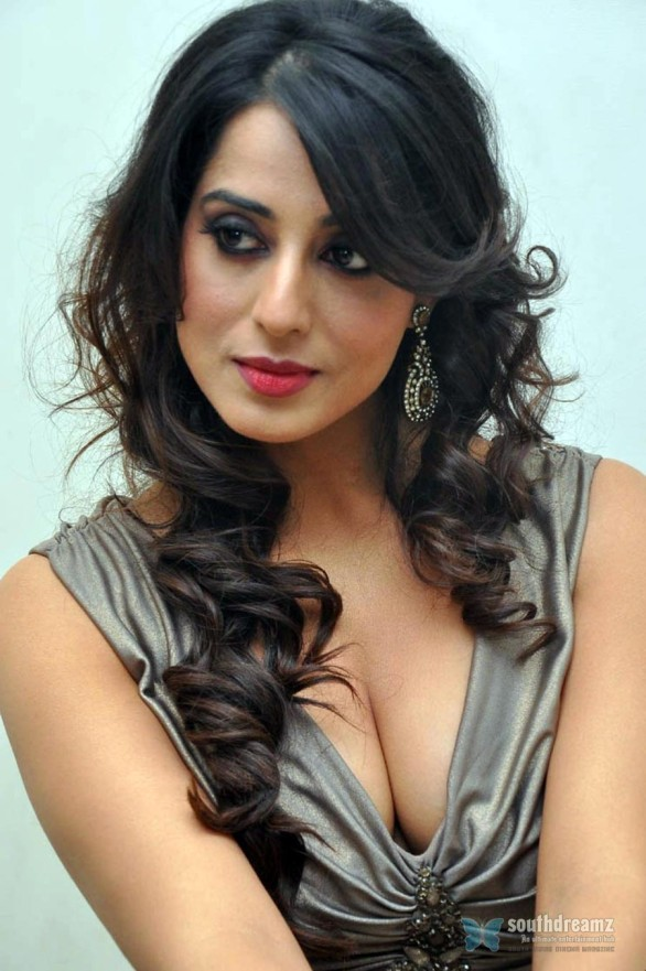 indian-bollywood-sexy-actress-mahie-gill-spicy-photos-16