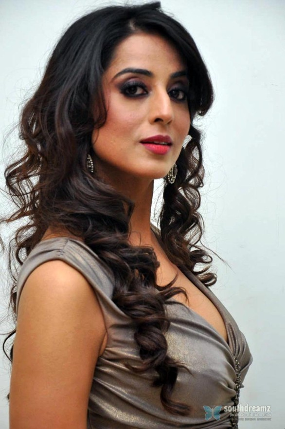 indian-bollywood-sexy-actress-mahie-gill-spicy-photos-33