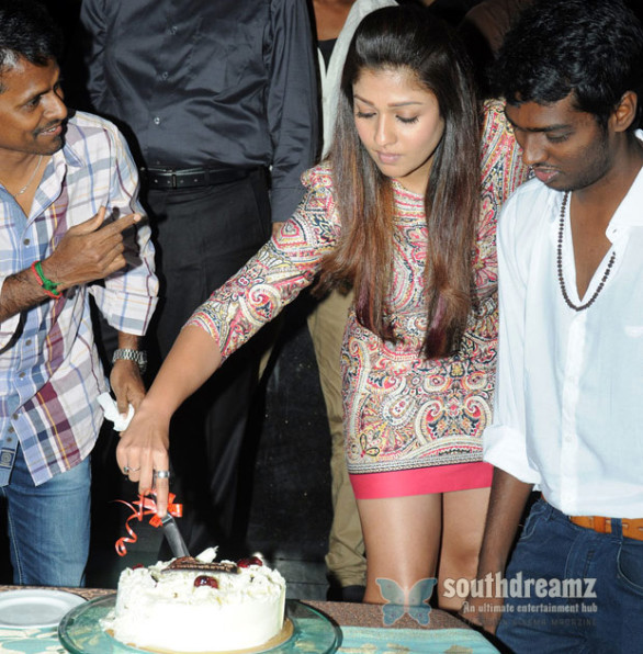 Raja-Rani-Movie-Success-Party-Photos
