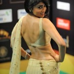 Shriya Saran Hot Saree Pics in IIFA 2012